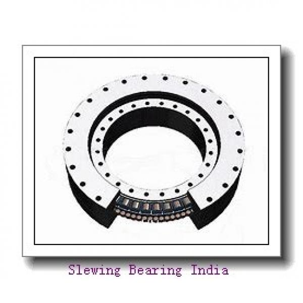CRB30025 Cross Cylindrical Roller Bearing IKO structure #1 image