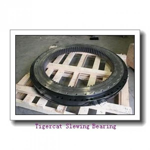 slewing ring turntable bearing with high precision for mining hydraulic excavator loader #1 image