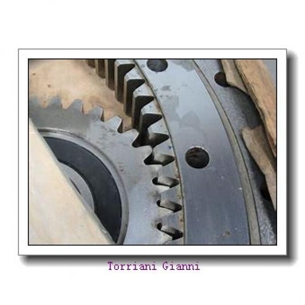 RE30040 crossed roller bearing outer ring rotation #1 image