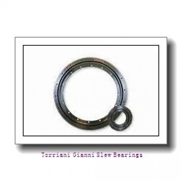 slewing ring bearing with high quality for tidal turbines compact forestry maritime military cranes #1 image